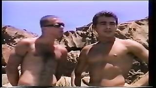 Tropical Gang smash On The Rocks