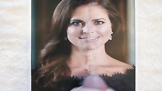 spunk  on Swedish Princess Madeleine Tribute