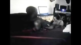BBW fucking Her unlit Bull on Webcam