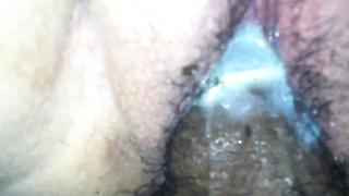 wet damp