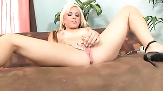 Jessica Steele - All approximately Me 2