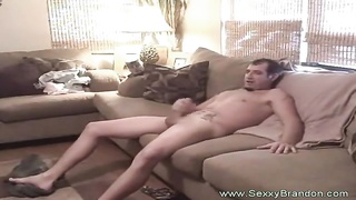 sofa Quickie For big-chested Brunette honey