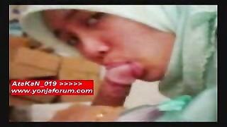 Arab female fledgling  pics  in slideshow