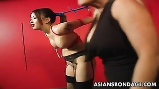 hobble oriental lass is clamped and toyed as she strings up