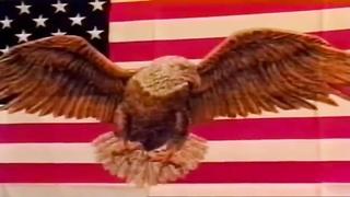 Real american bisex
