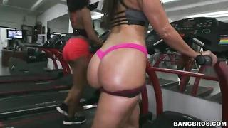 Flexy big-ass ebonies demonstrating their savage oiled booties