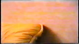 Thumb 7