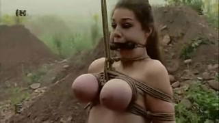 4 stunners Hogtied, Cow Milking